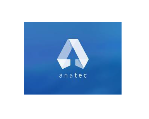 anatec-clients-carlysle-human-capital-consulting-services-head-hunters-job-seekers-employment-staff-staffing-solutions-kzn-south-africa