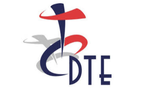 dte-clients-carlysle-human-capital-consulting-services